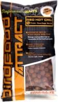 Бойлы тонущие STARBAITS BIRDFOOD ATTRACT Red Hot Chili 14mm, 1kg