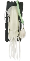 Оснастка для морской рыбалки SAENGER AQUANTIC Flashlight Giant Rig 0.70m - 10/0+12/0